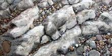 Rocas silíceas