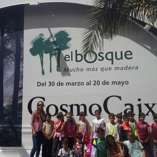 Visita a la exposición El Bosque. 1º 2º Primaria. CEIP Pinocho. 2016/17 27