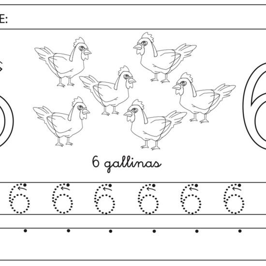 Número 6 gallinas