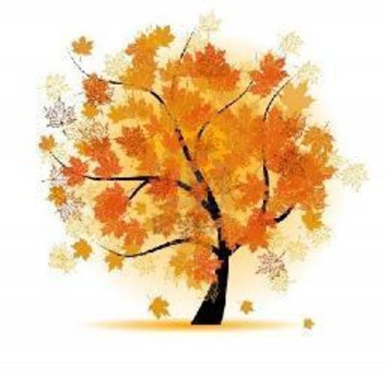 Arbolito otoño
