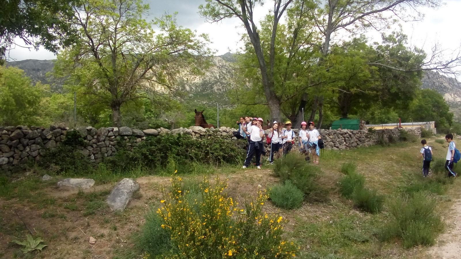 Camino de Santiago 3º EP 24