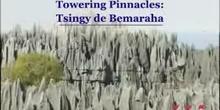 Towering Pinnacles: Tsingy de Bemaraha: UNESCO Culture Sector
