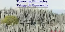 Towering Pinnacles: Tsingy de Bemaraha: UNESCO Culture Sector