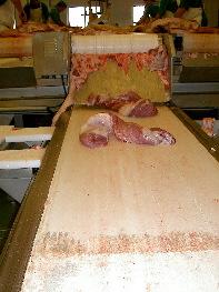 Cinta transportadora de carne