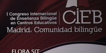 Taller: CLIL experiences in online higher education