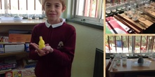 PRIMARIA 4º - PLANTS - NATURAL SCIENCE
