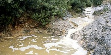 Cauce del río Isuala. Guara
