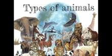 PRIMARIA - TERCERO - VERTEBRATE AND INVERTEBRATE ANIMALS - NATURAL SCIENCE - ANDREA, CRIS A, LUCÍA, INMA - FORMACIÓN