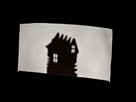 Los pulpos y las sombras chinas 16