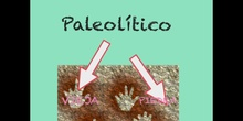 INFANTIL - 5 AÑOS - EL PALEOLÍTICO - ACTIVIDADES