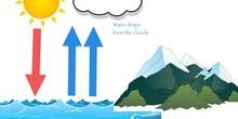 P2_NS The water cycle
