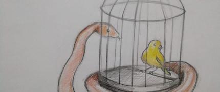 La serp i l'ocell (curso podcast educativo 2020)
