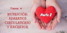 "Tema 4.2 -Vasos sanguíneos y corazón<span class=""educational"" title=""Contenido educativo""><span class=""sr-av""> - Contenido educativo</span></span>"