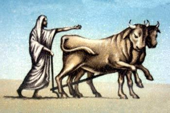 Arado romano