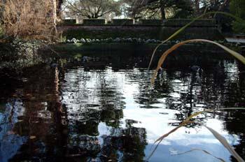 Lago artificial, Parque del Capricho, Madrid