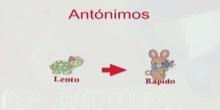 3ºS. GRAMÁTICA.SINONIMIA, ANTONIMIA, POLISEMIA Y HOMONIMIA.DIEGO RODRÍGUEZ Y ALFONSO PRIETO