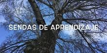 INFANTIL - 3-4 B - AÑOS - SENDAS DE APRENDIZAJE-ACTIVIDAD