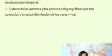 Práctica del curso de tutores del CRIF Las Acacias