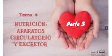 Tema 4.3-Latido cardiaco