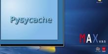 Visita a Pysycache