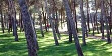 Vía ciclista de Colmenar Viejo; Madrid