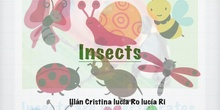 P2_NS Insects A