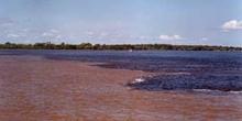 Rio Negro y Solimoes, Brasil