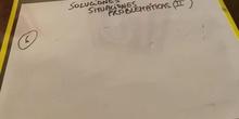 Solución problema 6 fracciones
