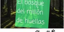 EL BOSQUE DEL MILLÓN DE HUELLAS