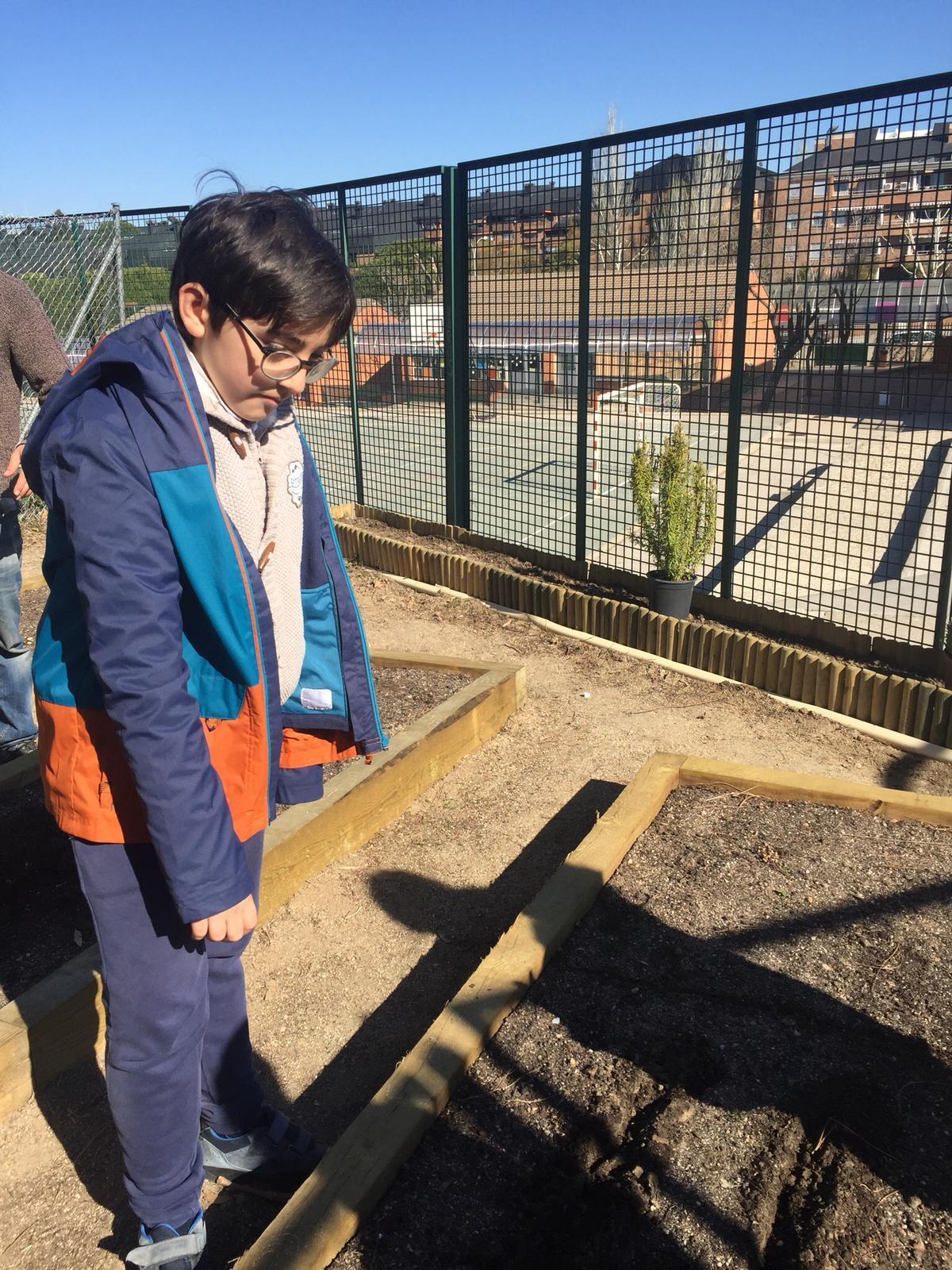 Quinto de Primaria_Taller de Huerto Escolar_CEIP Fernando de los Ríos_Las Rozas 8