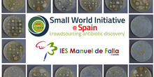Small Wordl Initiative IES Manuel de Falla