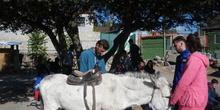 SALIDA A GRANJA ESCUELA EL PALOMAR (Chapinería ) 20