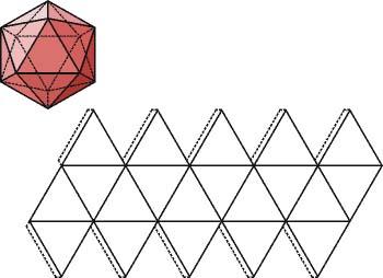 El icosaedro y su desarrollo