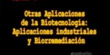 Capítulo 7º: Aplicaciones industriales y biorremediación