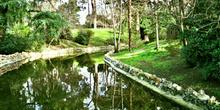 Canal en un parque