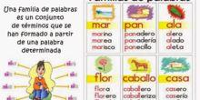 EXPLICACIÓN FAMILIAS DE PALABRAS
