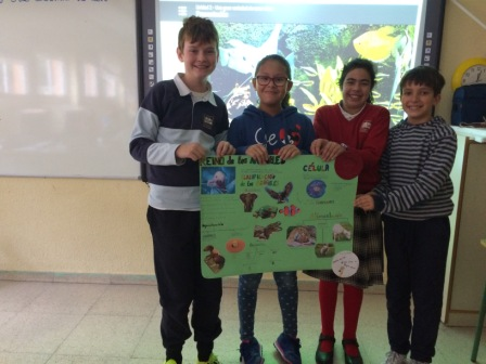 2016_12_Quinto A_Aprendizaje Cooperativo en CCNN 7