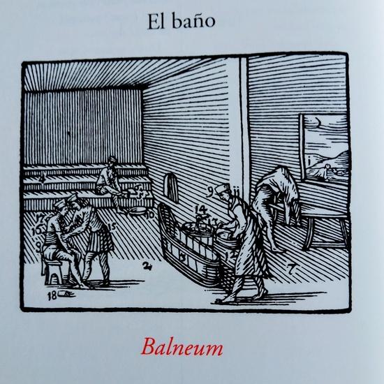 Orbis Pictus Balnea