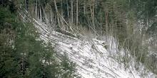 Alud de nieve en Ordesa
