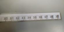 mas rectas numéricas 5