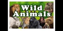 PRIMARIA - 2º - WILD ANIMALS - INGLÉS - FORMACIÓN