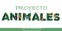 Presentación animales 2º de Primaria