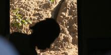 Sombra de mujer, Quilombo
