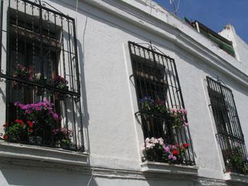Balcones de rejas adornados con flores, Córdoba, Andalucía