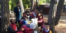 Excursión al zoo 5 años, 1º y 2º Luis Bello 7