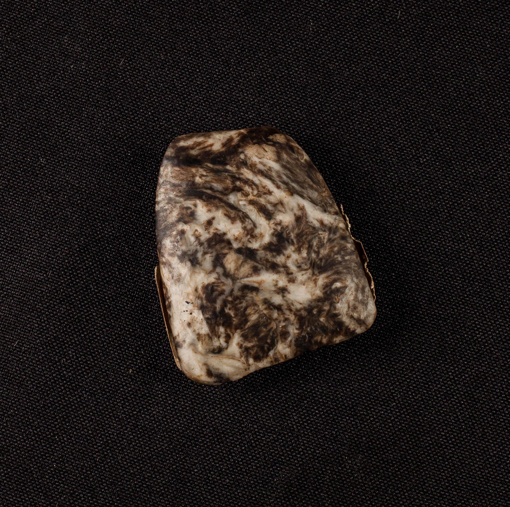 IES_SANISIDRO_MUSEO_Prehistoria_005