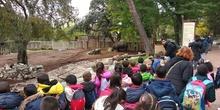 Visita al zoo 2019 17