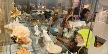 Excursión al Museo Nacional de Ciencias Naturales 11