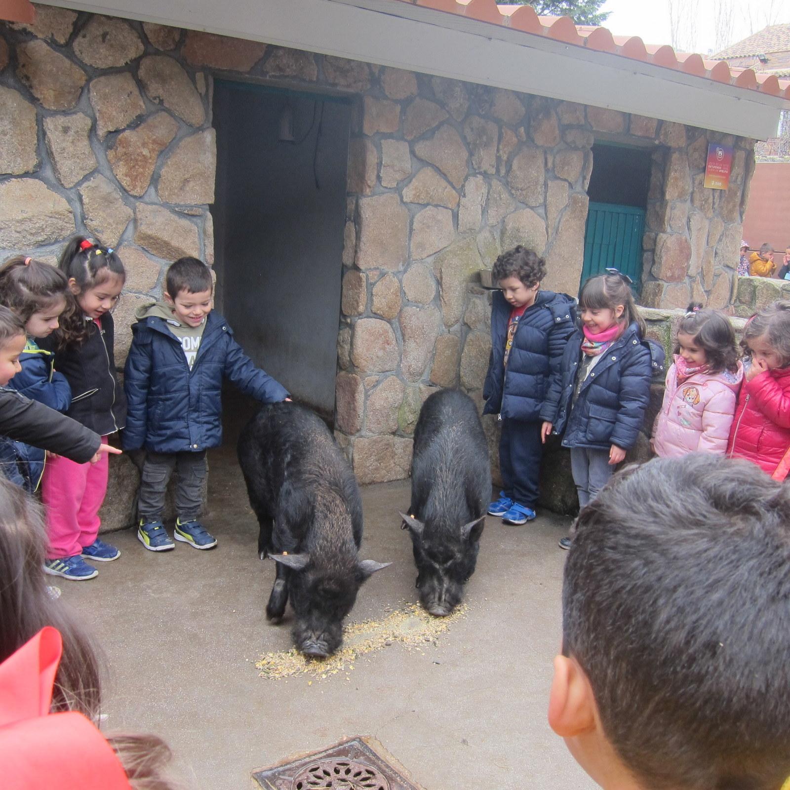 Granja Escuela Educación Infantil Curso 2017-18 19