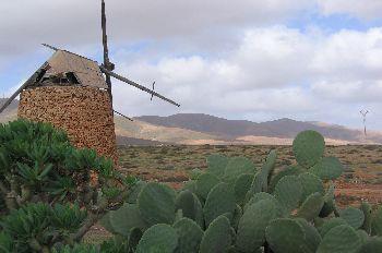 Molino, Canarias